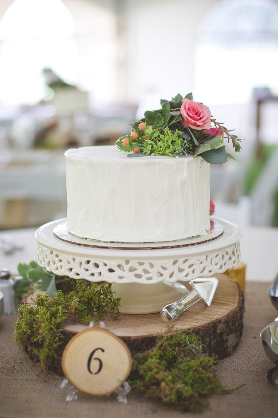 Detroit-South-Lyon-Moose-Ridge-Wedding-Photographers-Reception-Cake